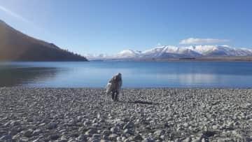 Nancy taking in the sites at Lake Tekapo