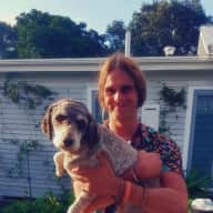 Profile image for pet sitter Matthew