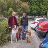 Profile image for pet sitters Katharine & Nick