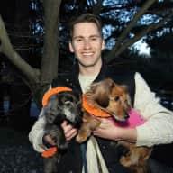 Profile image for pet sitter Joshua