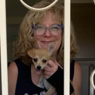 Profile image for pet sitter Alison