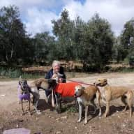 Profile image for pet sitter Yvonne