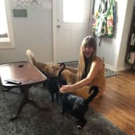 Profile image for pet sitter Casey