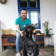 Profile image for pet sitter David