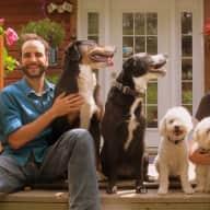 Profile image for pet sitters Fabien et Noémie & Fabien