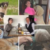Profile image for pet sitters Glenn & Hannah