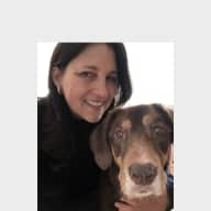Profile image for pet sitter Meike