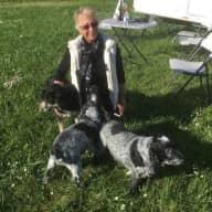 Profile image for pet sitter Bev