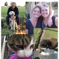 Profile image for pet sitters Yvonne & Cindy