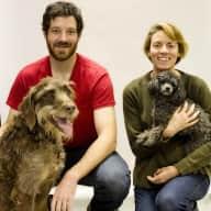 Profile image for pet sitter Henry