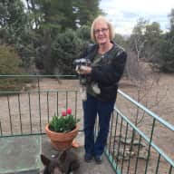 Profile image for pet sitter Lea