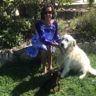 Profile image for pet sitters Judith Carol & Trevor