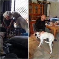Profile image for pet sitters Wilton & Claudia