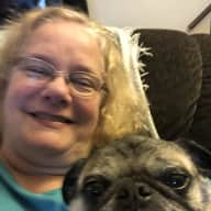 Profile image for pet sitter Lesa