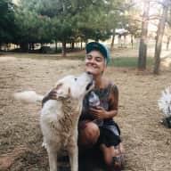 Profile image for pet sitter Ember