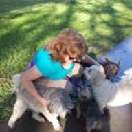 Profile image for pet sitter Christine