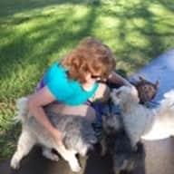 Profile image for pet sitter Christine