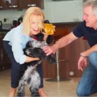 Profile image for pet sitters Angela & John
