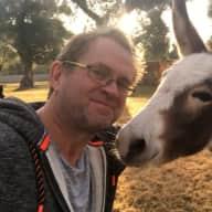 Profile image for pet sitter Adam
