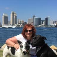 Profile image for pet sitters Stephanie & Marcus