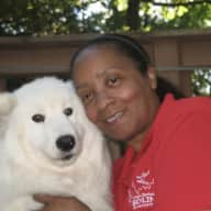 Profile image for pet sitter Tracey