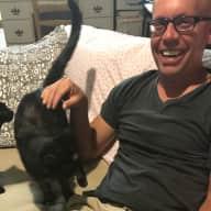 Profile image for pet sitter Dean