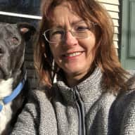 Profile image for pet sitter Sophia