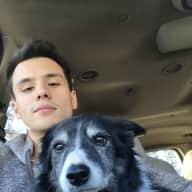 Profile image for pet sitter Kyle