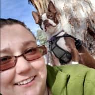 Profile image for pet sitter Josie