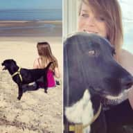 Profile image for pet sitter Kim