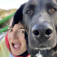 Profile image for pet sitter Núria