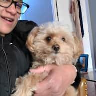 Profile image for pet sitter Terri