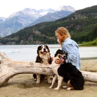 Profile image for pet sitter Kayla