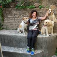 Profile image for pet sitter Dena