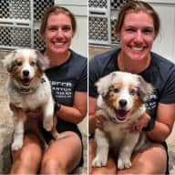 Profile image for pet sitters Ashley & Kolby
