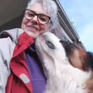 Profile image for pet sitters Lynette & Rob