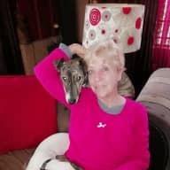 Profile image for pet sitter Elizma Woods