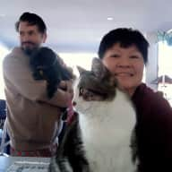 Profile image for pet sitters David & Jye