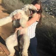 Profile image for pet sitter Rebecca