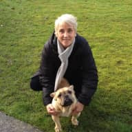 Profile image for pet sitter marian