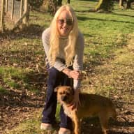 Profile image for pet sitter Zowie