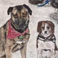 Profile image for pet sitters Daniela & Richard