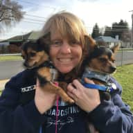 Profile image for pet sitter Pamela
