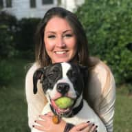 Profile image for pet sitters Megan & Sebastian