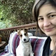 Profile image for pet sitter Nasimeh