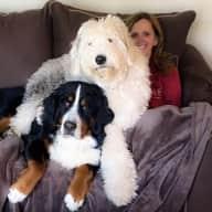 Profile image for pet sitters Michael & Lisa