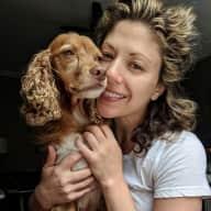 Profile image for pet sitter Rachele