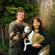 Profile image for pet sitters Mare & Steve