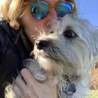 Profile image for pet sitter Doreen