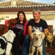Profile image for pet sitters Iuliia & Maxim